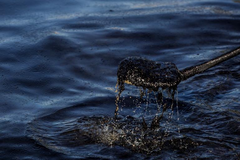 Marée noire (illustration)