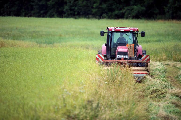 Trois agriculteurs bio portent plainte contre l'Etat