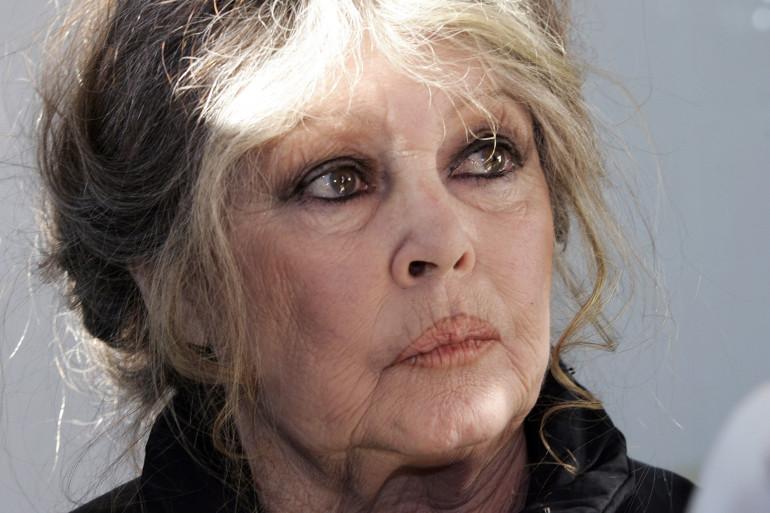 Brigitte Bardot va se présenter aux élections européennes avec le Parti Animaliste