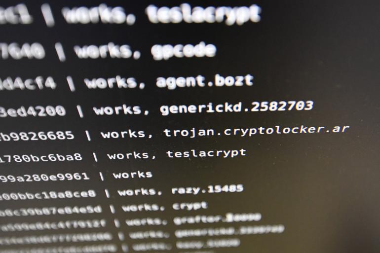 Un virus informatique (illustration)