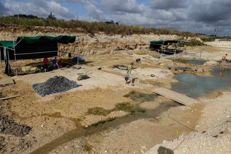 Le site paléontologique d'Angeac-Charente en 2015