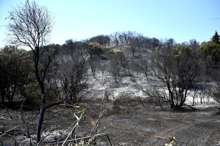 Les incendies dans le Gars, fin juillet 2019