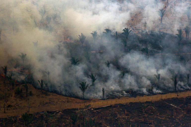 La forêt amazonienne ravagée par des incendies