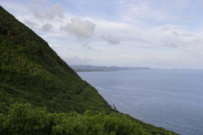 Une vue de la Martinique (illustration)