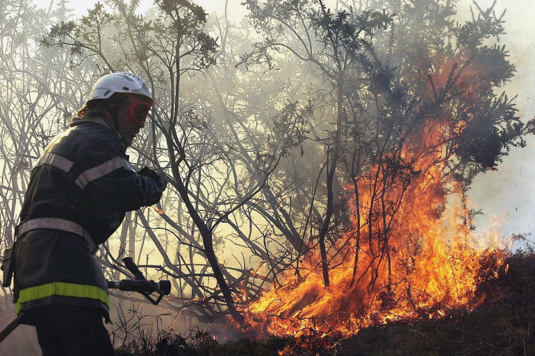 Un pompier lutte contre les flammes, au pied du col d'Ibardin, dans les Pyrénées-Atlantiques, le 03 février 2002. (illustration)