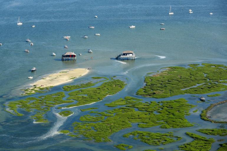 Une vue aérienne de l'Île aux Oiseaux sur le bassin d'Arcachon