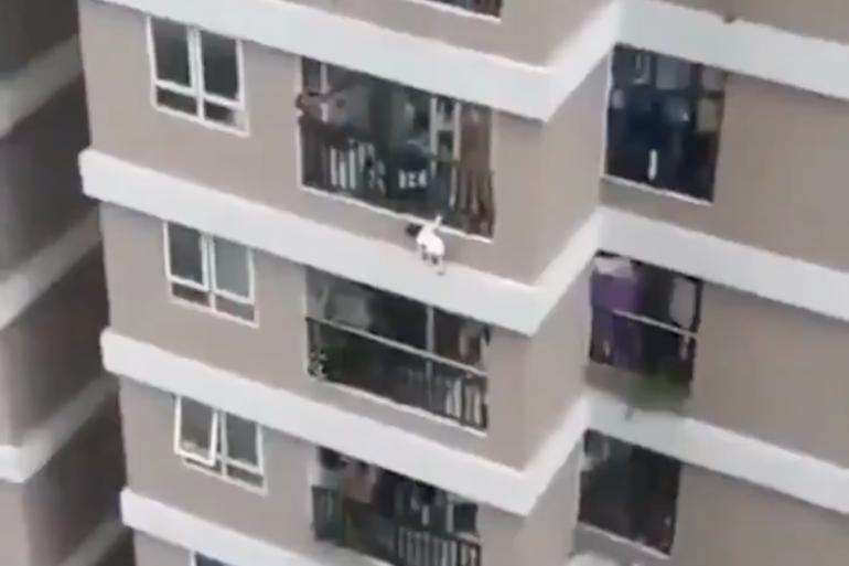 Une fillette a chuté du 12e étage d'un immeuble, au Vietnam, dimanche 28 février.