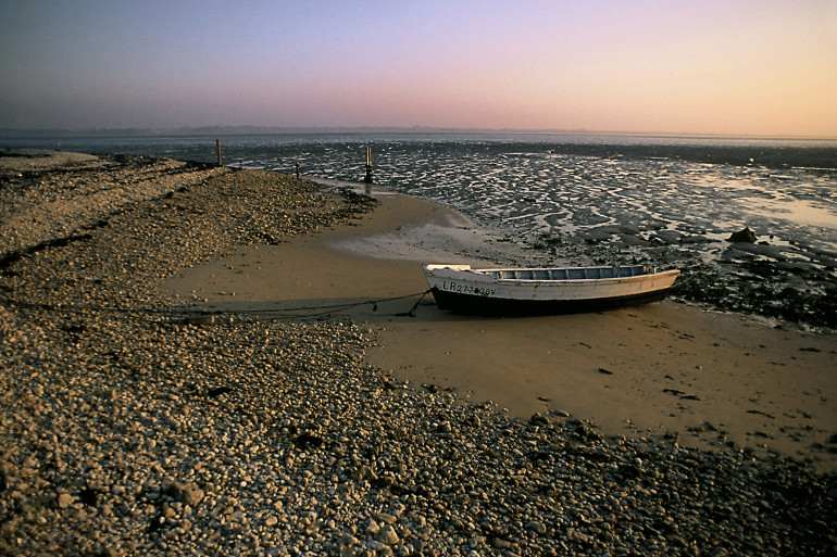 Douze personnes, coincées sur l'Île Madame, ont été rapatriées par un marin pêcheur.