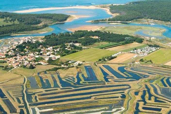 La bande de terre en diagonale au centre de la photo ( à gauche du camping) : 6500 m2 de terrain rachetés 15 fois le prix pour préserver l'écosystème de la vallée du Veillon à Talmont-Saint-Hilaire.