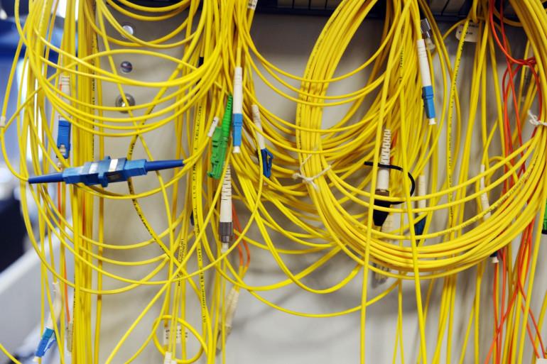 Des câbles de fibre optique (illustration)