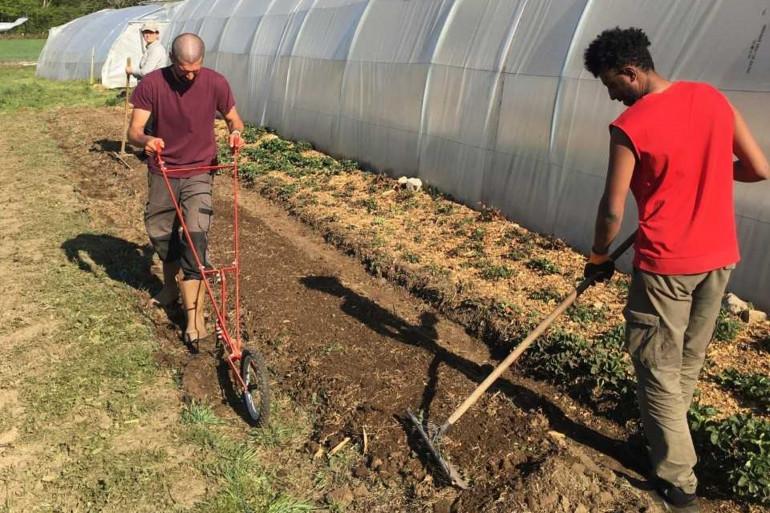 Ermias et Samuel en plein travail de la terre dans la ferme