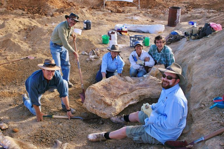 Nouvelle espèce de dinosaure découverte en Australie : le Australotitan cooperensis, de la famille des titanosaures