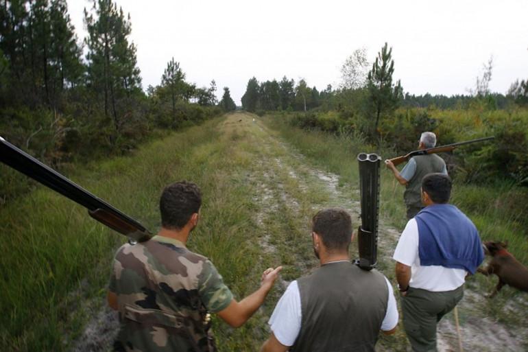 Les associations de défense des animaux luttent pour faire interdire la chasse à la glu.