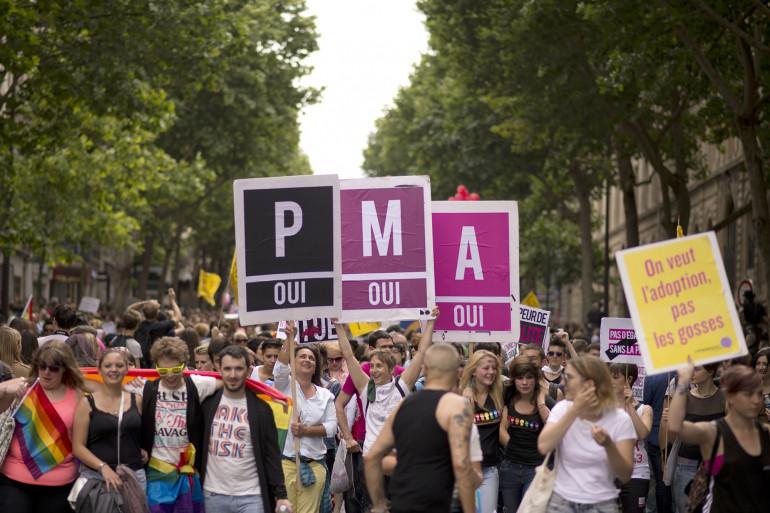 Des manifestants pro PMA lors de de la Gay Pride à Paris en 2013.