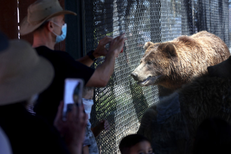 Le zoo d'Oakland, en Californie (image d'illustation)