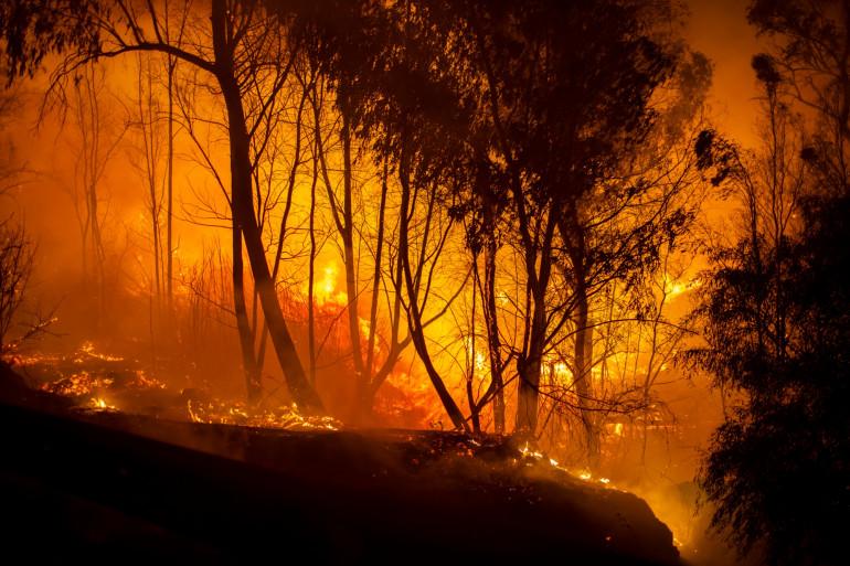 Un violent incendie fait rage dans le Var depuis ce lundi 16 août