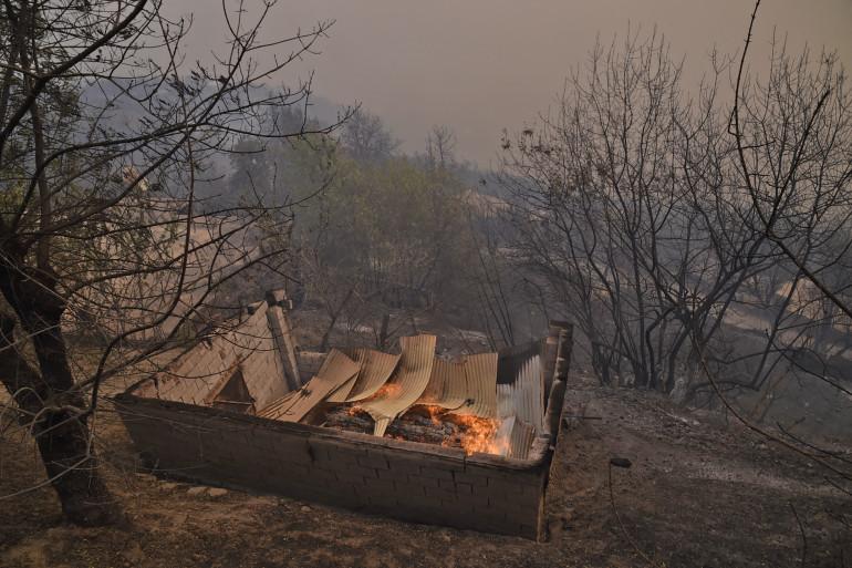 Incendies en Algérie