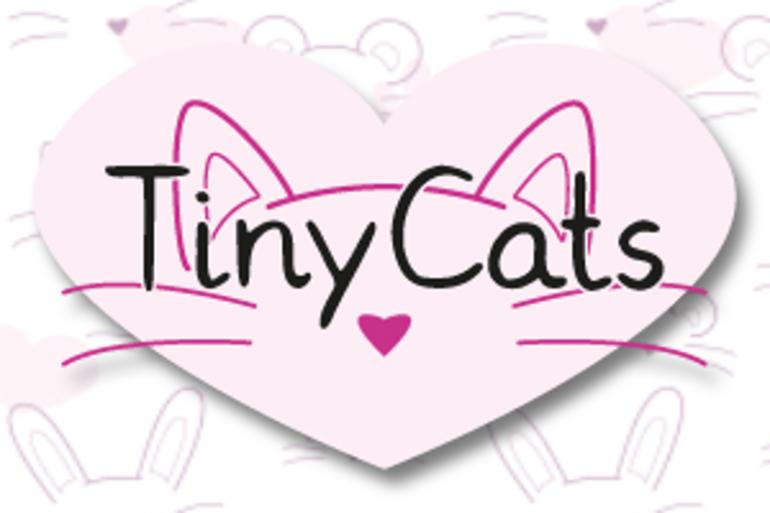 Vous pouvez partir les yeux fermés avec Tiny Cats