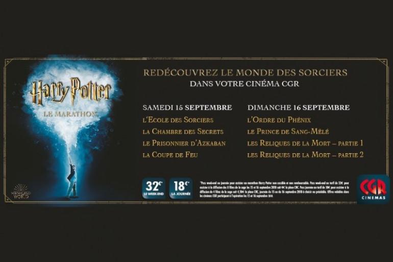 Le marathon Harry Potter au CGR le Français à Bordeaux