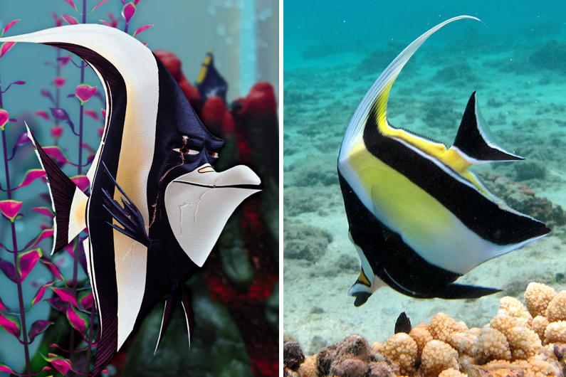 """Gill, l'un des personnages principaux du """"Monde de Nemo"""", est un Zancle cornu."""