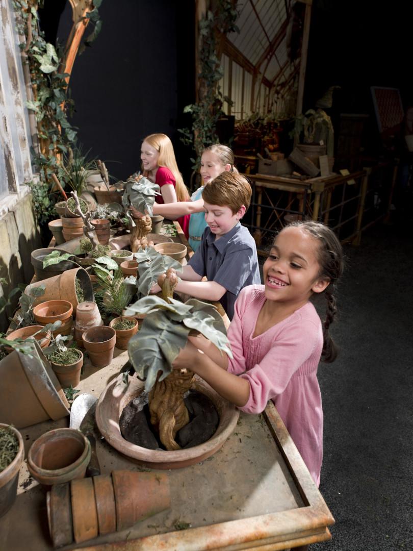 La botanique d'Harry Potter sera présente à l'exposition
