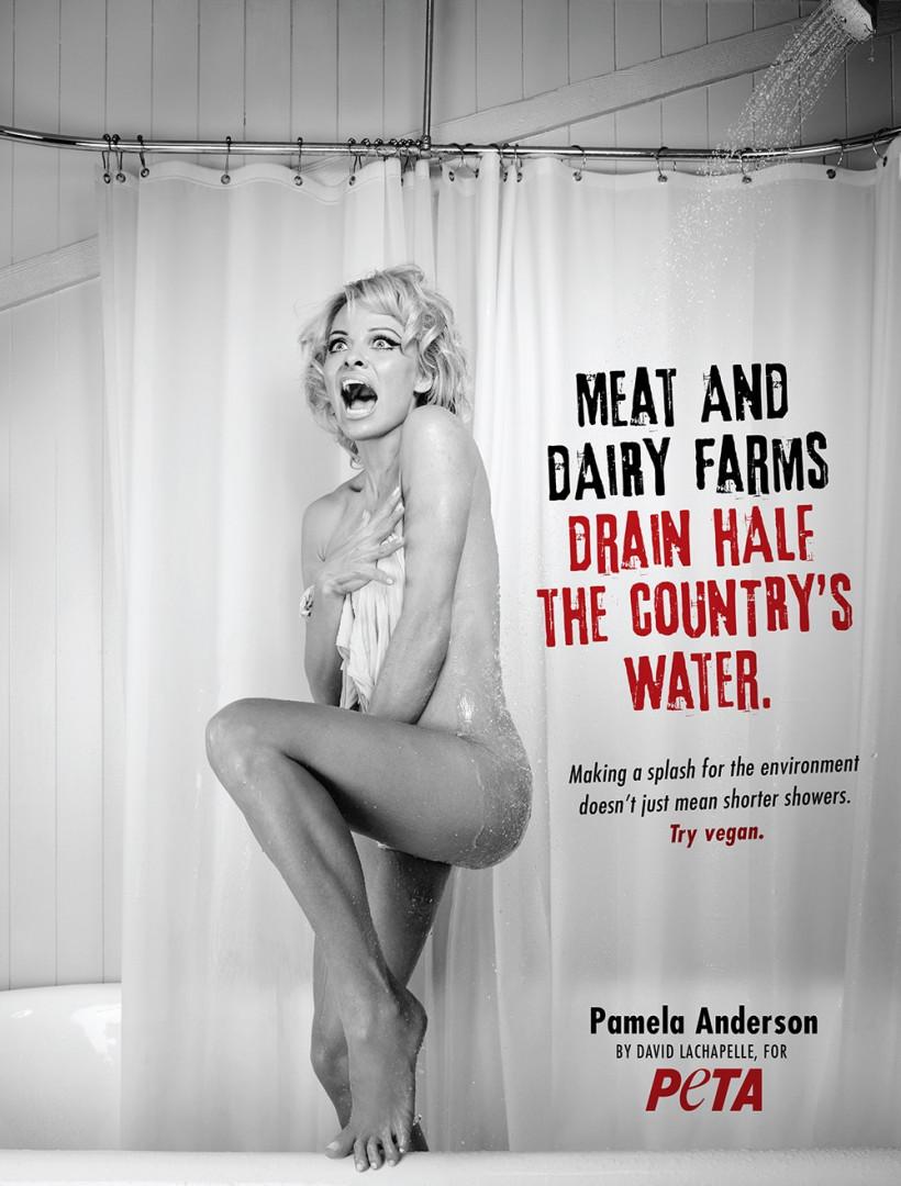 En fervente militante de PETA, Pamela Anderson participe régulièrement aux campagnes de l'association.