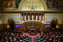 Le Sénat à Paris, le 17 décembre 2020. (Illustration)