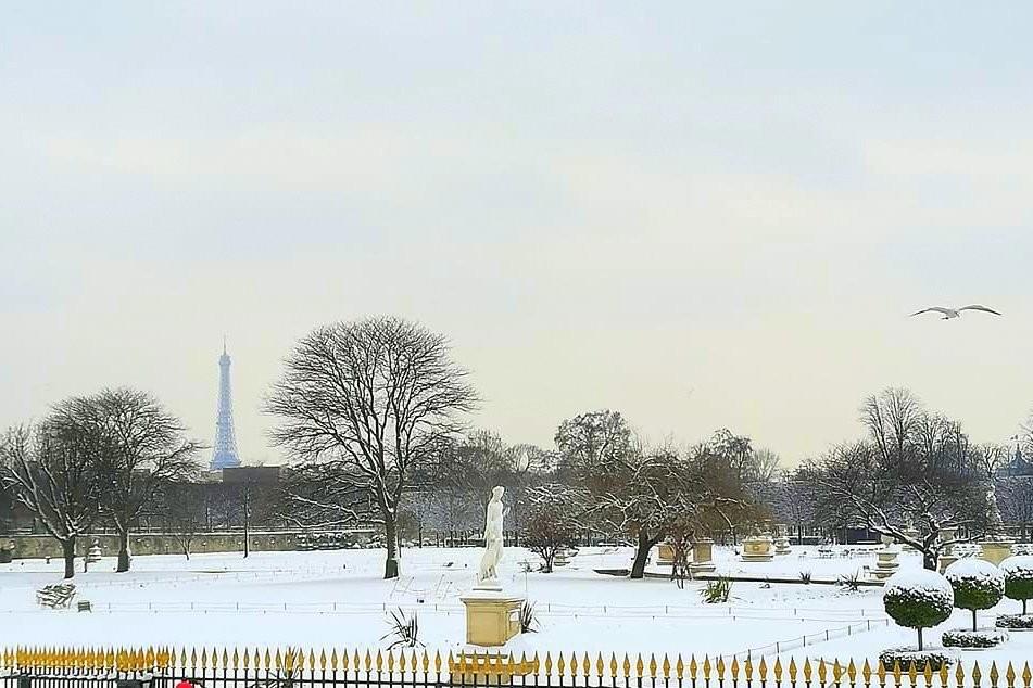 La neige dans le jardin des Tuileries (Paris) le 7 février 2018