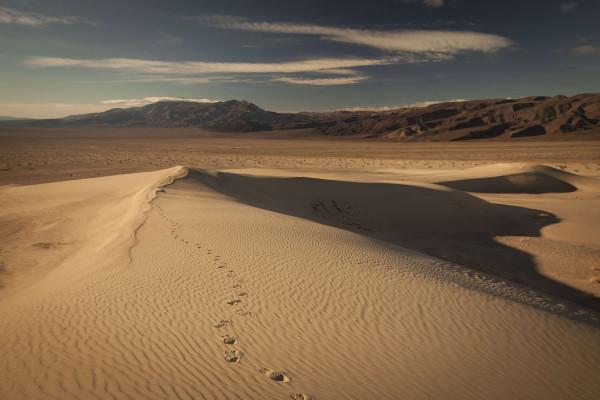 Il deserto californiano (illustrazione)