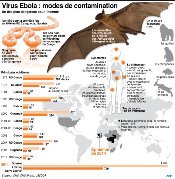 Ebola : les modes de contamination