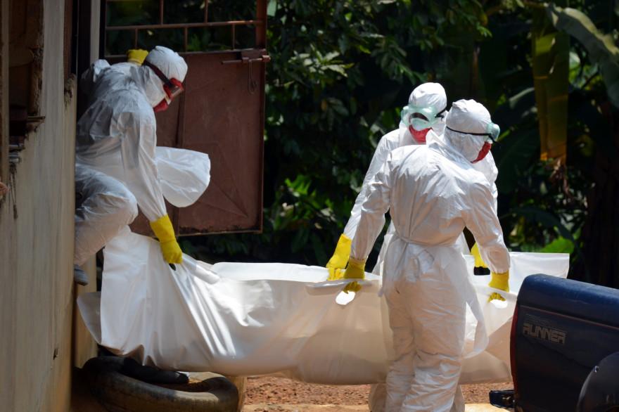 Du personnel médical transporte le corps d'une victime d'Ebola. (illustration)