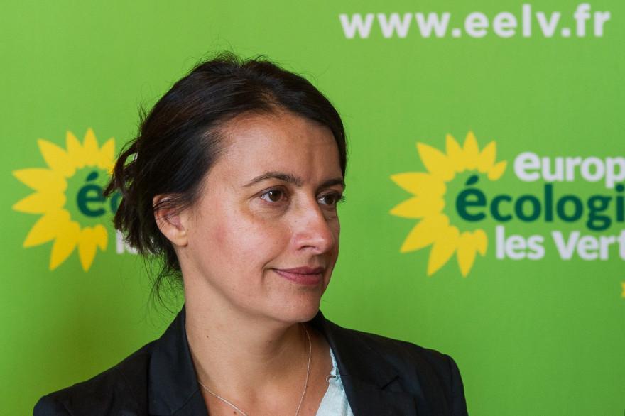 Cécile Duflot à Tours le 14 mai 2014. (archives)