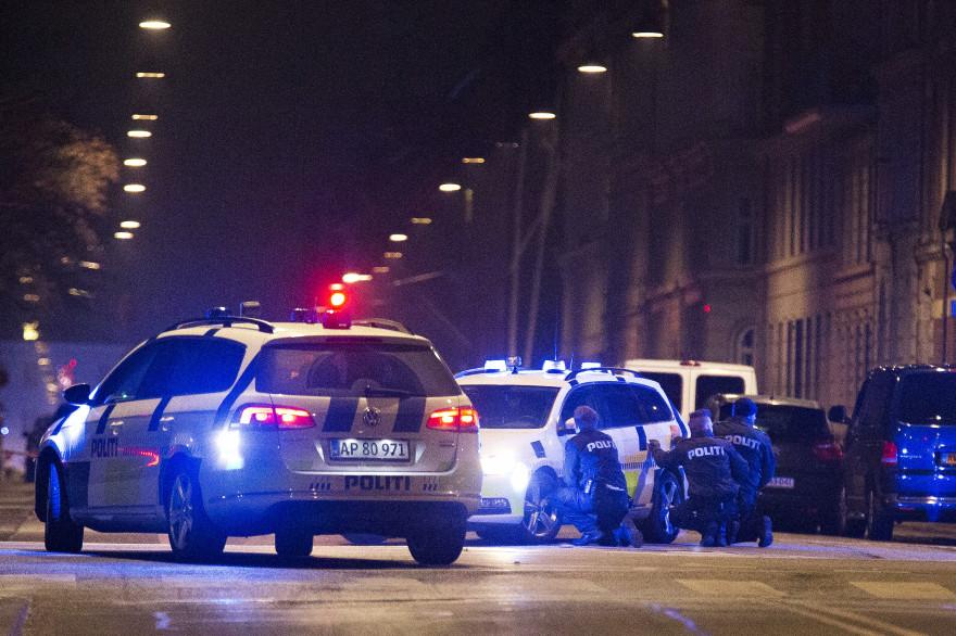Les policiers à Copenhague le 14 février 2015