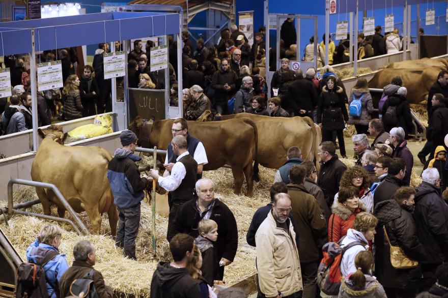 Le Salon de l'Agriculture a ouvert ses portes, le samedi 21 février
