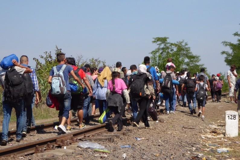 Un groupe de migrants syriens rejoignants la Hongrie par la Serbie