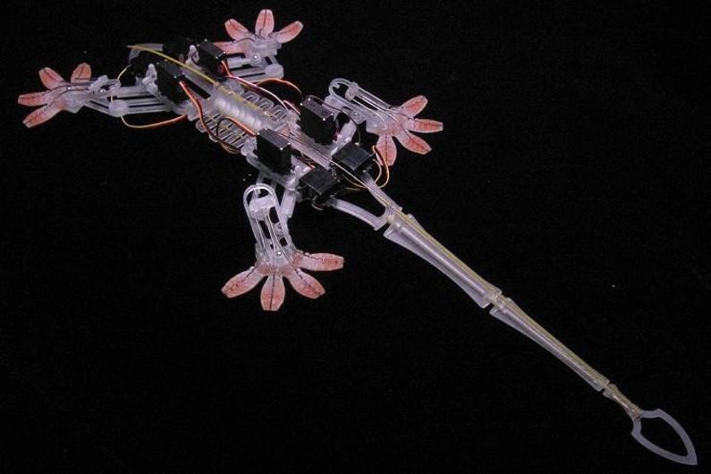 Stickybot, un robot inspiré de l'allure et de la structure corporelle d'un lézard.