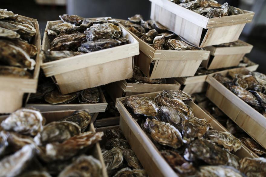 Des bourriches d'huîtres à Pirou le 12 décembre 2017