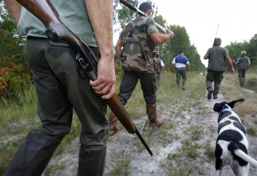 Médoc : exaspéré, il abat son chien de chasse de deux coups de fusil