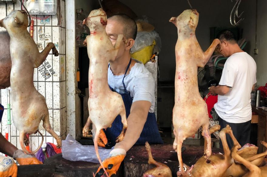 Un étal lors de la Fête de la viande de chien de Yulin en 2018.