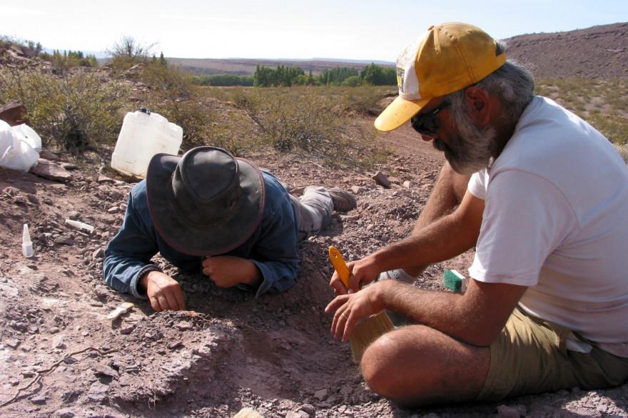 Des fouilles archéologiques (illustration)
