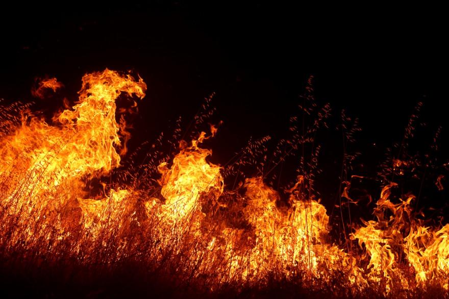 La Californie a été frappée par de violents incendies durant l'été 2020