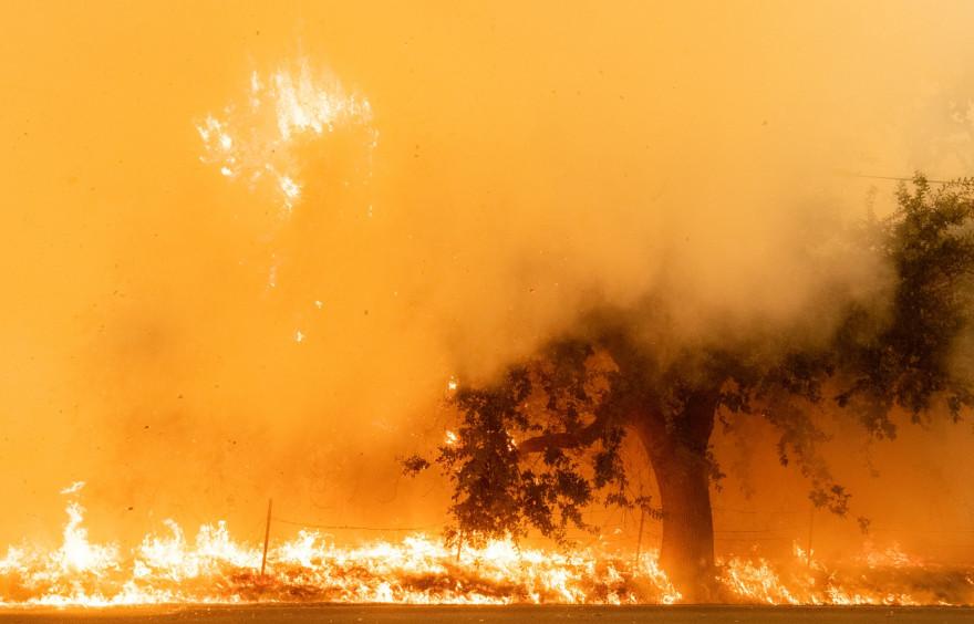 Les incendies en Californie en août 2020 (illustration).