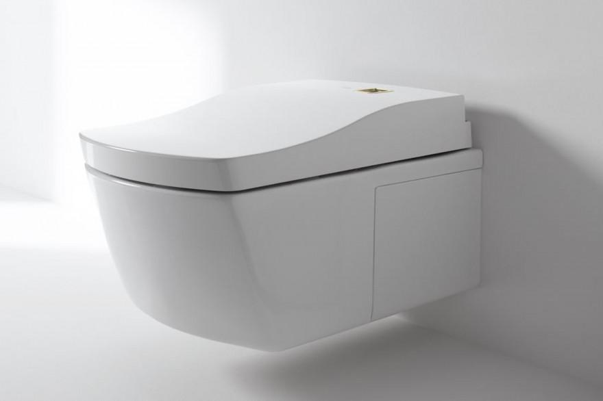 Ces toilettes autonettoyantes se lavent une seule fois par an
